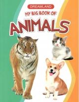 សៀវភៅរូបសត្វ Animals Tiger cat and dog