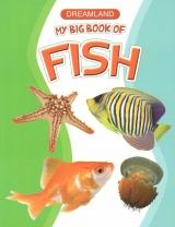 សៀវភៅរូបសត្វក្រោមបាតសមុទ្រ Sea Fish